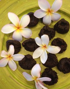 cacao truffles with wild orange essential oil