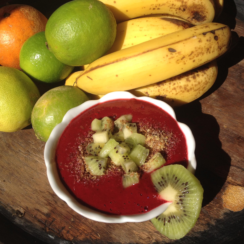 BerryHempColostrum Pudding