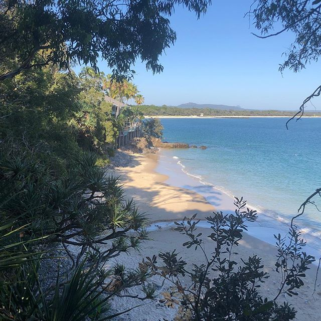 #noosa is a great place for a recharge during the busy pre-Christmas e-commerce panic...and the weather is a touch better than Melbournes 😬😂 #insidermedia #shopify #ecommerce #qld #sunshinecoast #summer