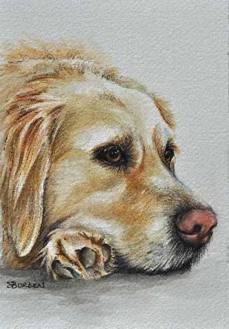 Shelly Burden is aPortrait Artist who offers a donation to GRRNT with each portrait purchased. Mention GRRNT when placing your order.   Click here to visit her website.
