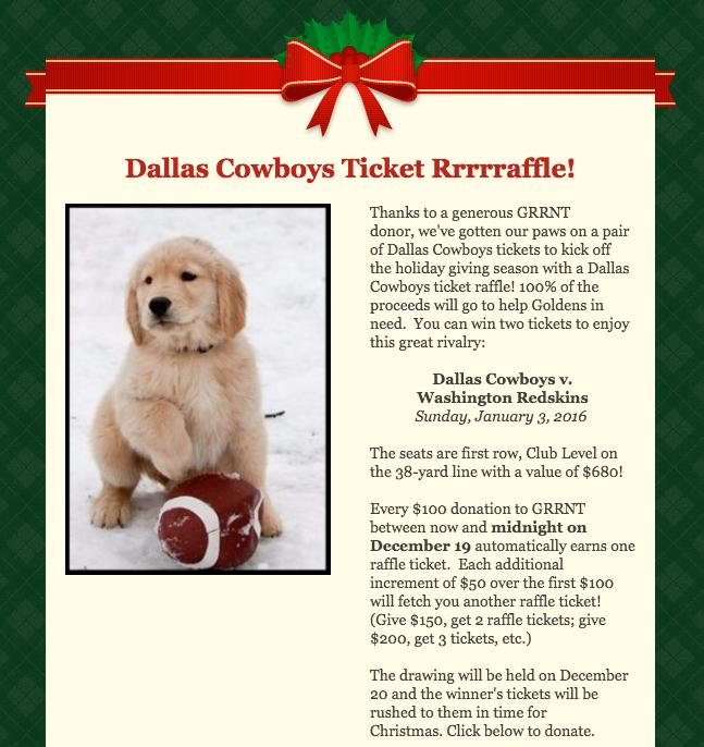 Cowboys raffle art.jpg