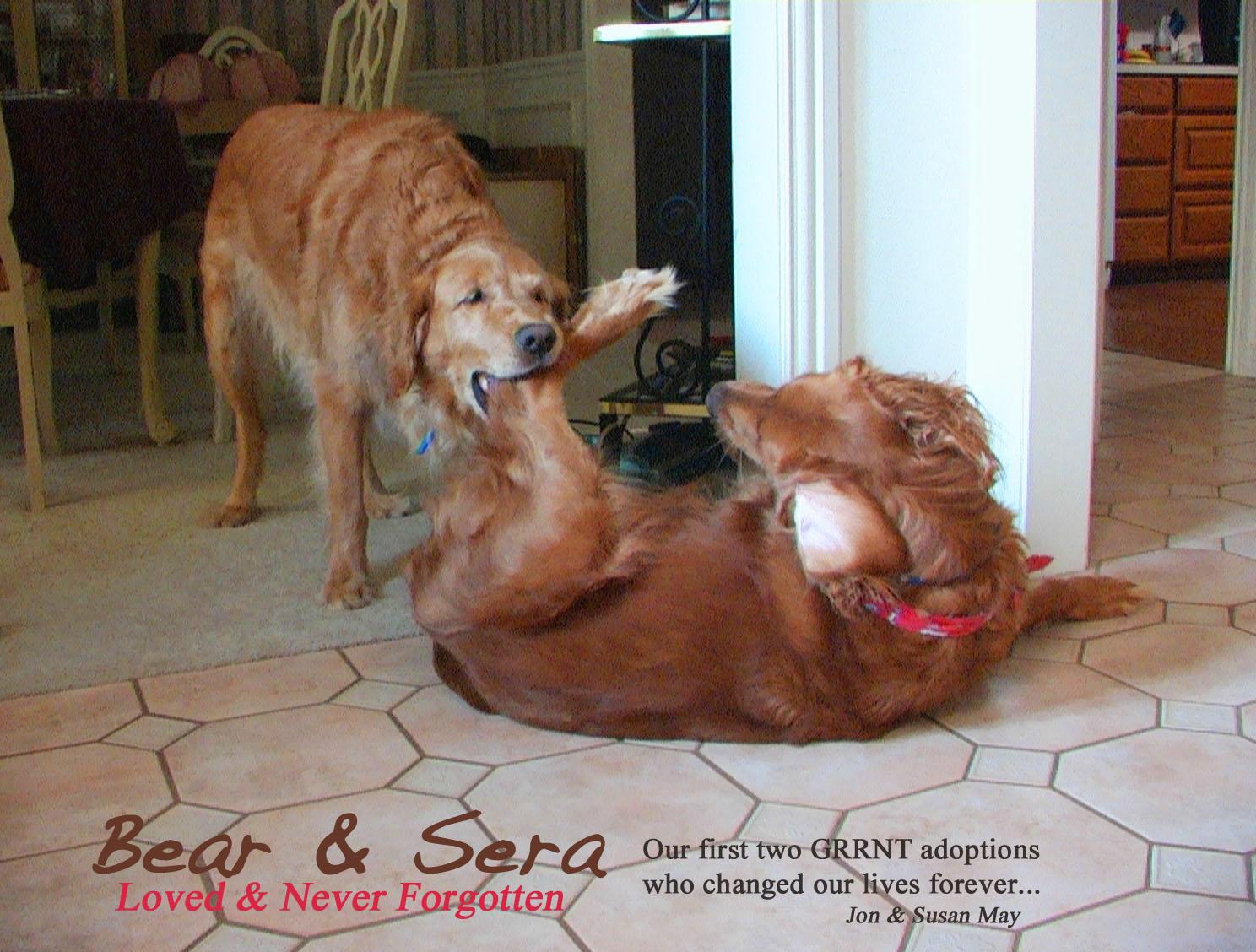 Bear eats Seras Leg_edited-2.JPG