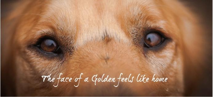 gr face fb.jpg