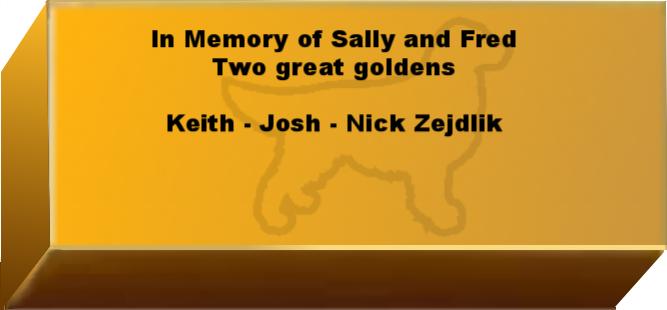 Golden Wall Brick empty 6.png