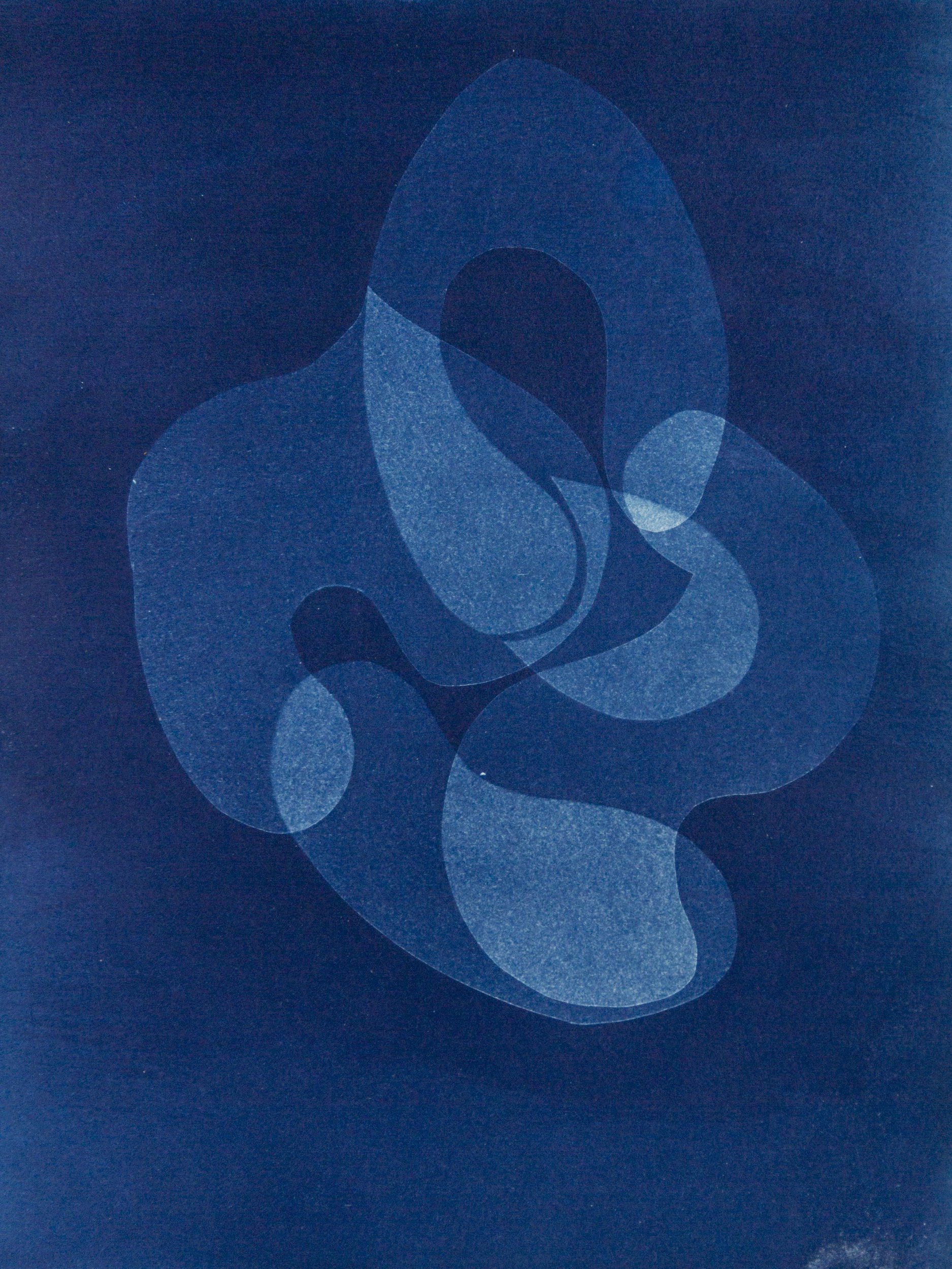 "organism IIl, cyanotype, watercolor paper, 9""x12"", 2019"