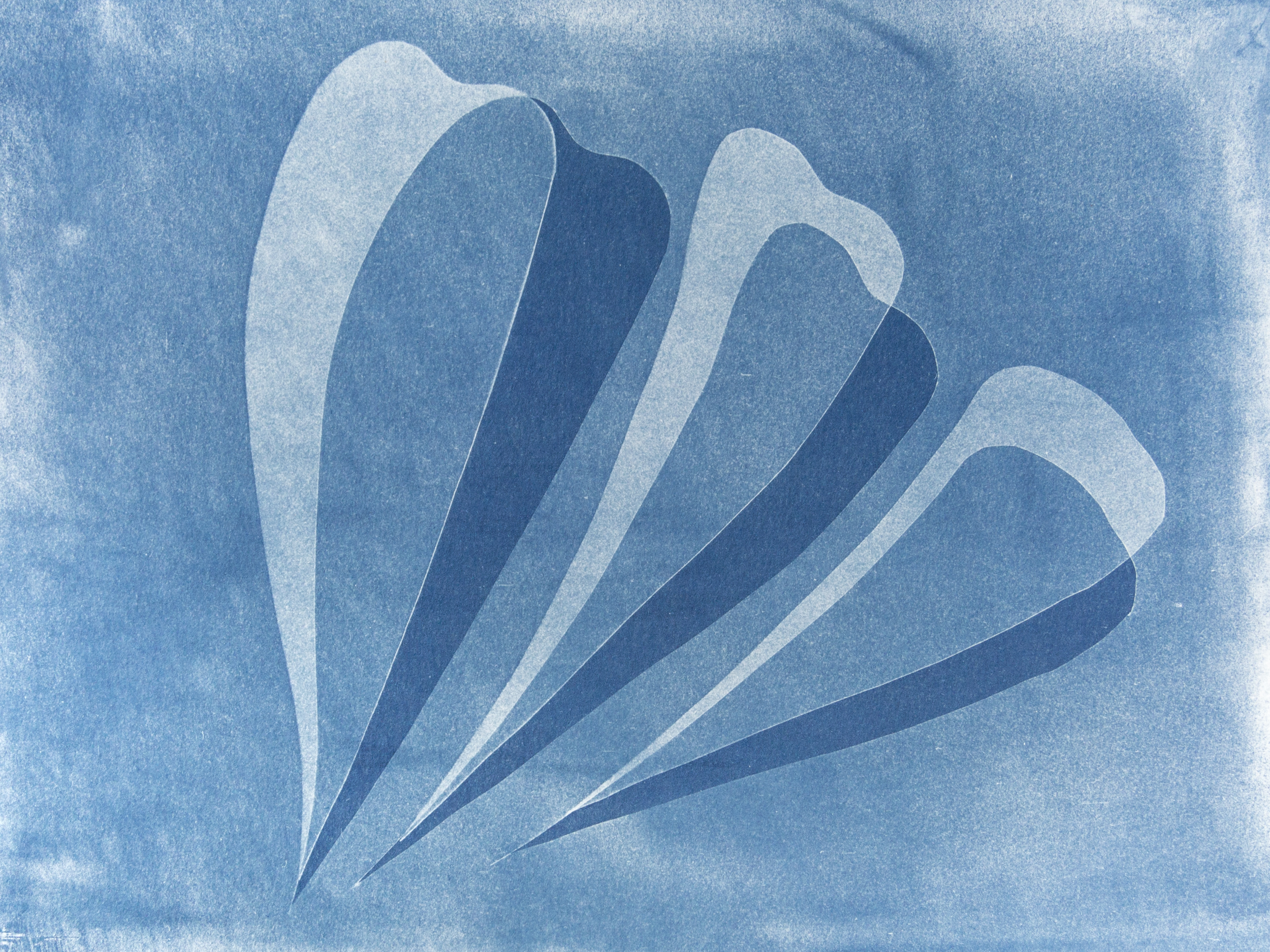 "sails, cyanotype, watercolor paper, 9""x12"", 2019"