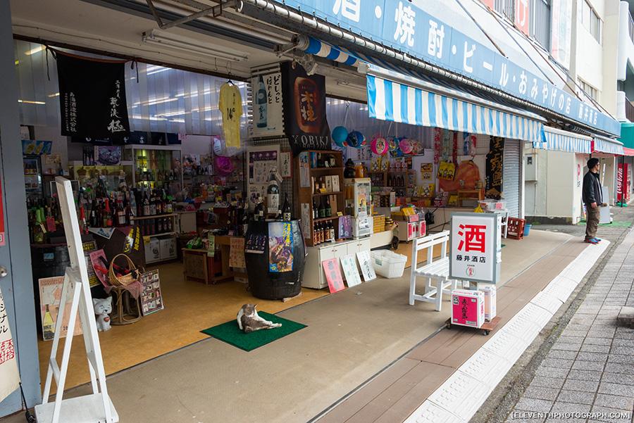 InJapan2014_008.jpg