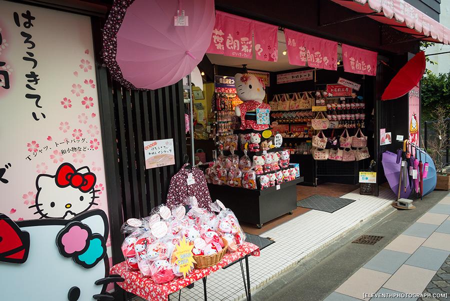 InJapan2014_010.jpg