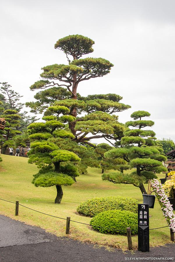 InJapan2014_260.jpg