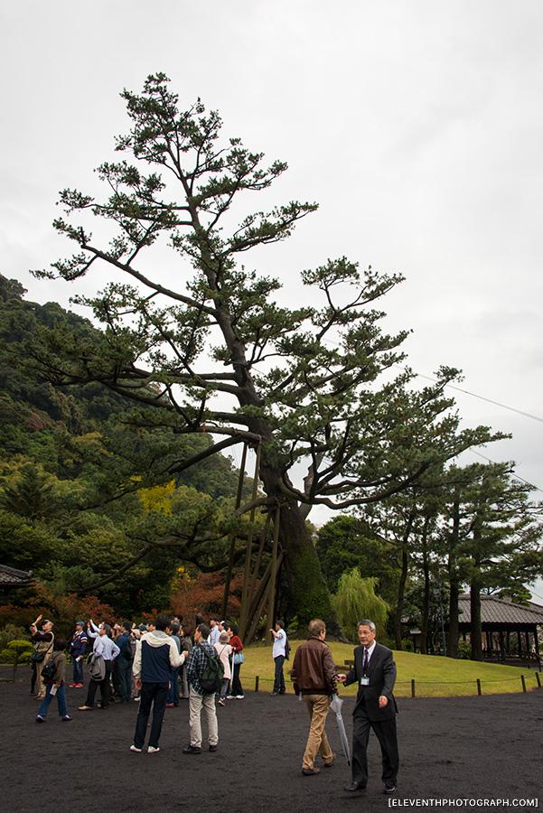 InJapan2014_268.jpg