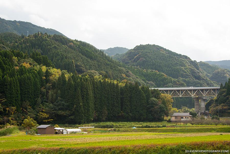 InJapan2014_311.jpg