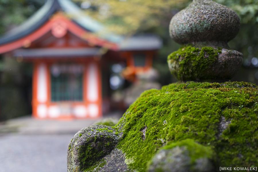 Japan_Osak&Tokyo_MK_146.jpg