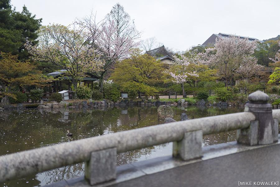 Japan_Osak&Tokyo_MK_187.jpg
