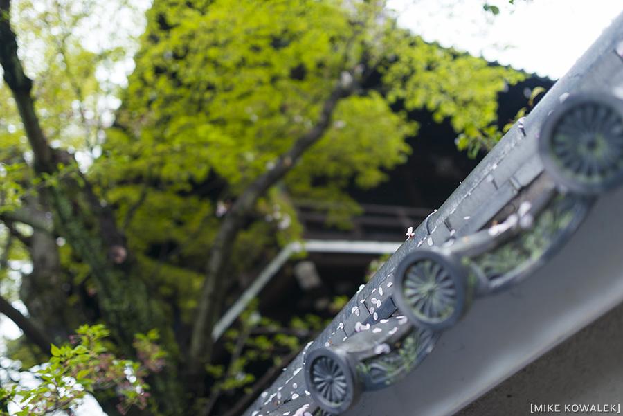 Japan_Osak&Tokyo_MK_193.jpg