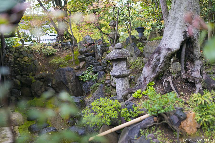 Japan_Osak&Tokyo_MK_195.jpg