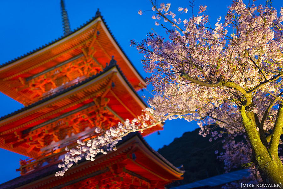 Japan_Osak&Tokyo_MK_219.jpg