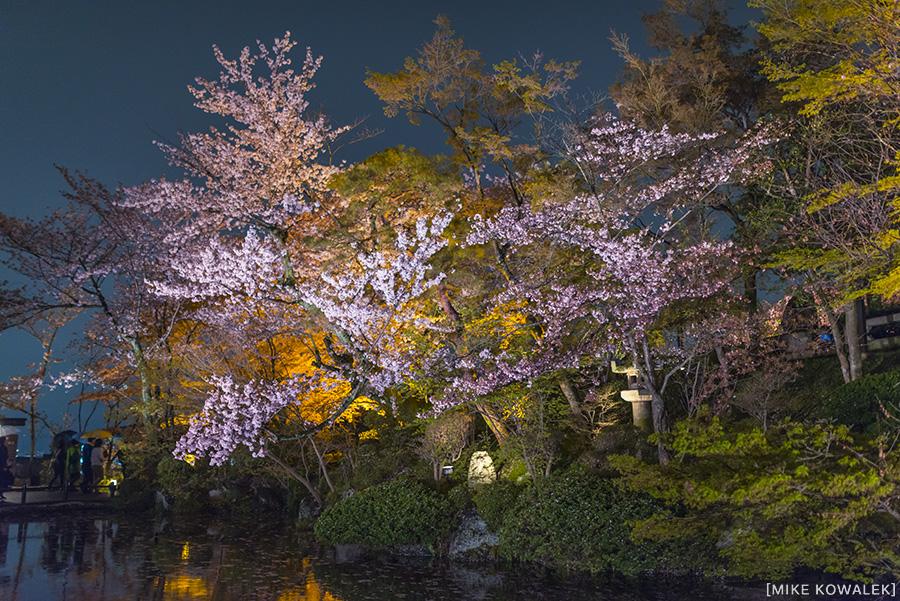 Japan_Osak&Tokyo_MK_229.jpg