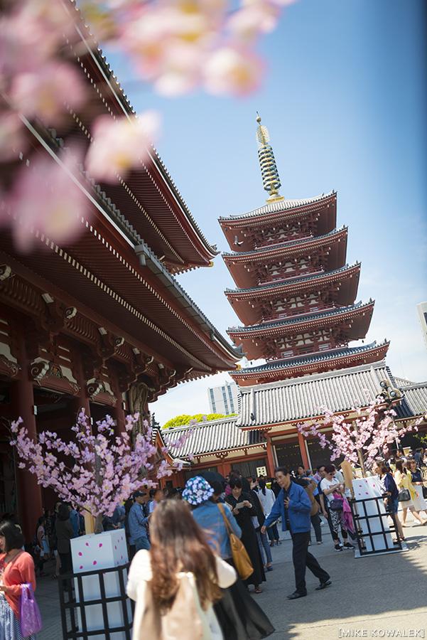 Japan_Tokyo_May2015_166.jpg