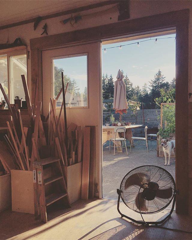 19/52 — Golden Hour(s) . . . #abmlifeisbeautiful #exploreeverything #finditliveit #folktravel #lifeofadventure #livethelittlethings #livefolk #mytinyatlas #mybeautifulmess #nothingisordinary #pnw #pnwisbest #pnwisbeautiful #pnwonderland #seattle #thehappynow #thatsdarling #upperleftusa #thevisualcollective #visualsoflife #wanderfolk  #wandeleurspark #wanderwashington #woodworking