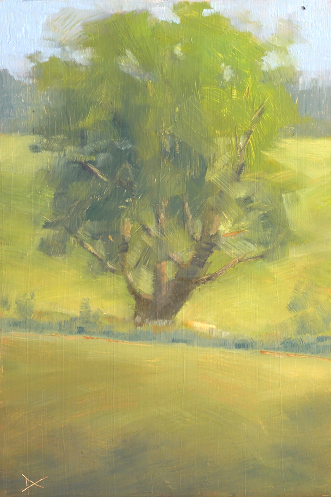 A big tree in the meadow at Longwood Gardens. Oil on panel, 12 by 8 inches.