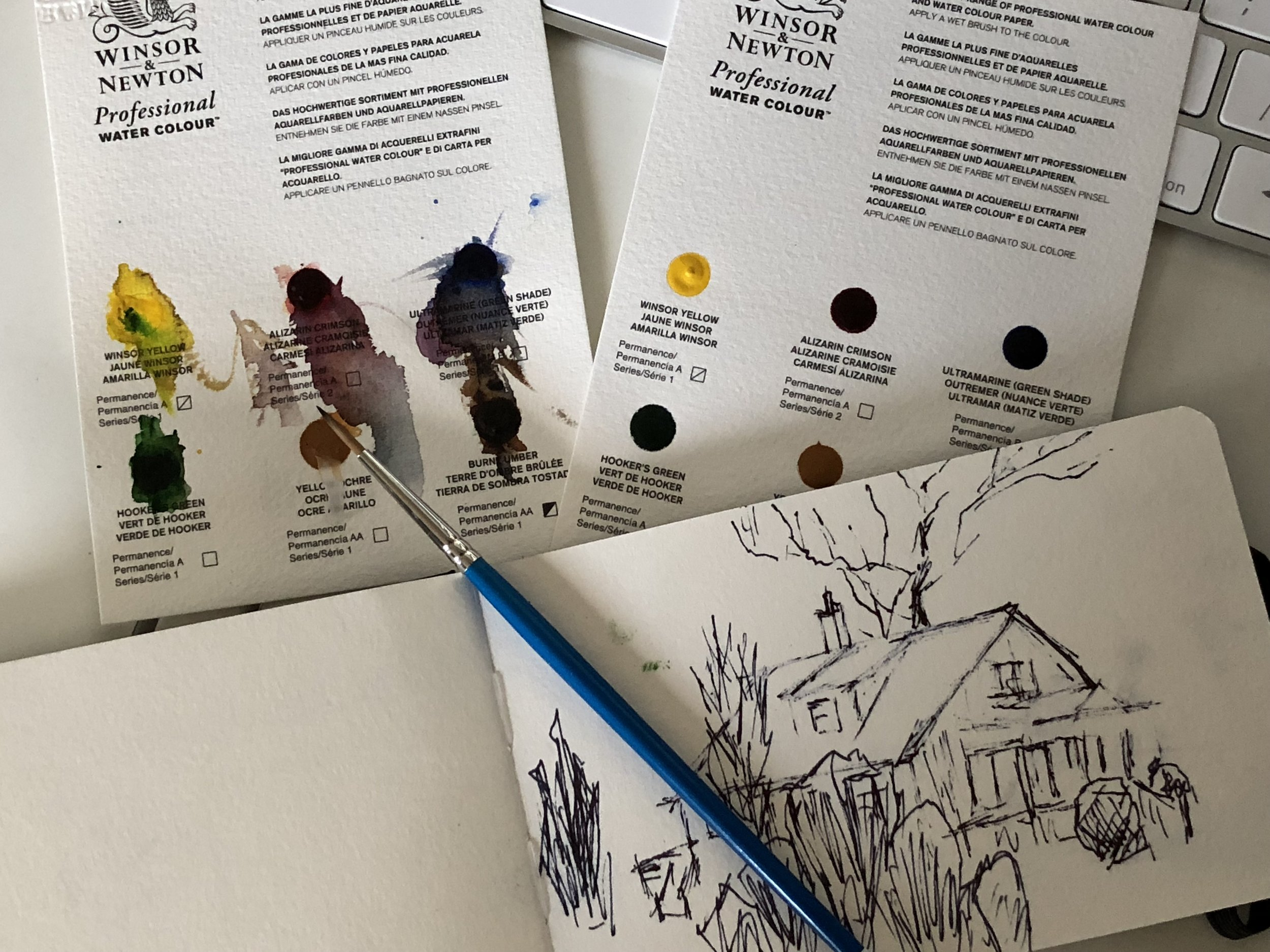 Samples from the demonstration: Colour sample chart, brush and watercolour paper.