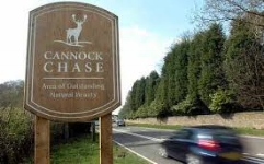 Car Parks on Cannock Chase