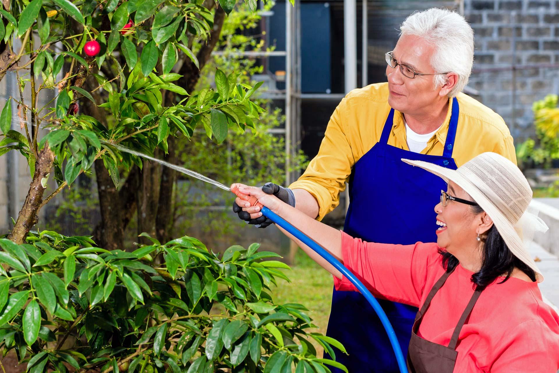 Low Maintenance Aging In Place Landscape