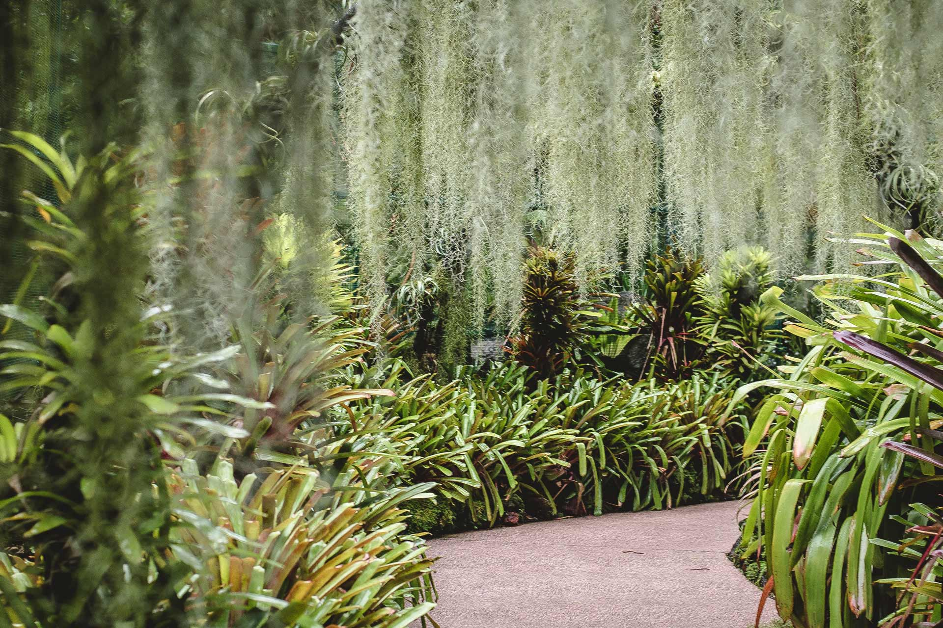 Using Texture In a Garden