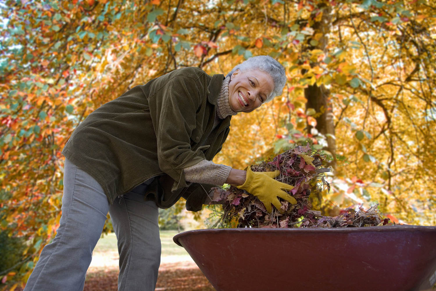 Aging-in-Place Garden and Landscape Design