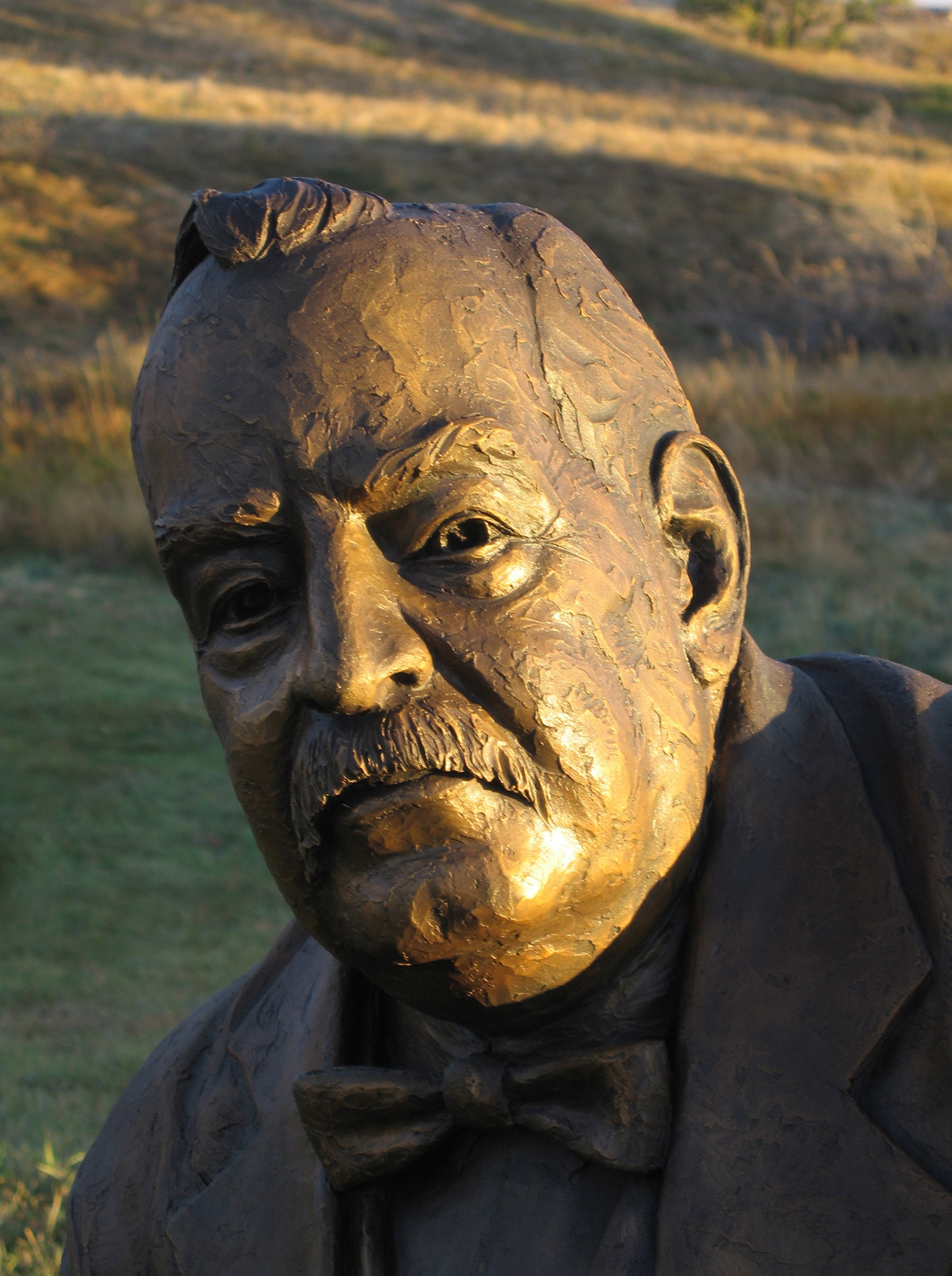 Grover Cleveland - detail
