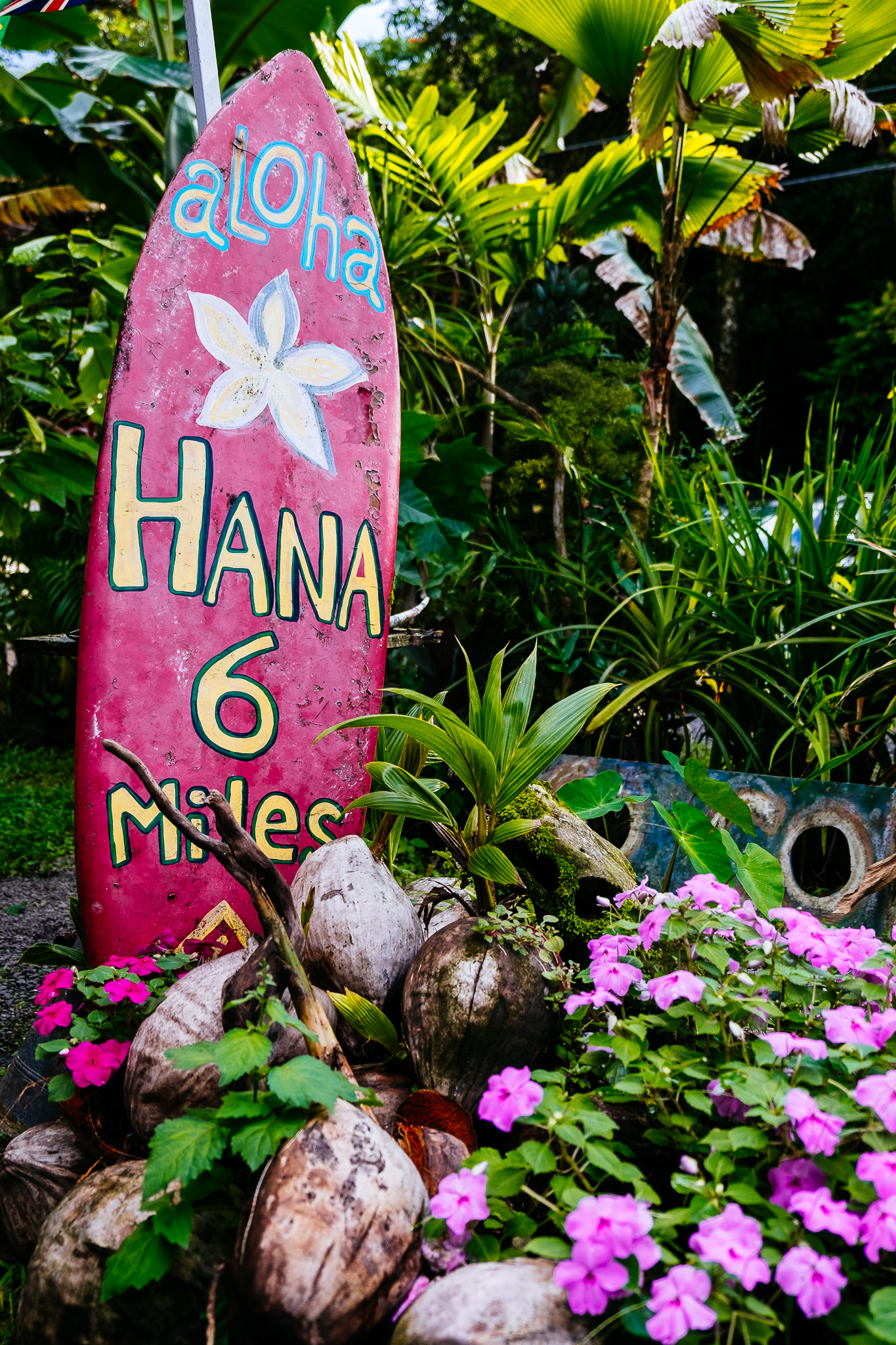 Hawaii-Blog-057.jpg
