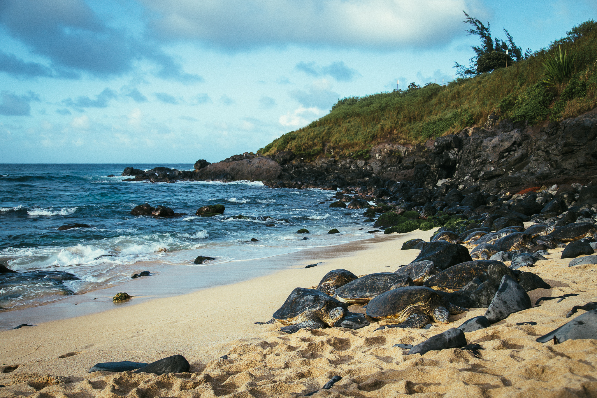 Hawaii-Blog-102.jpg