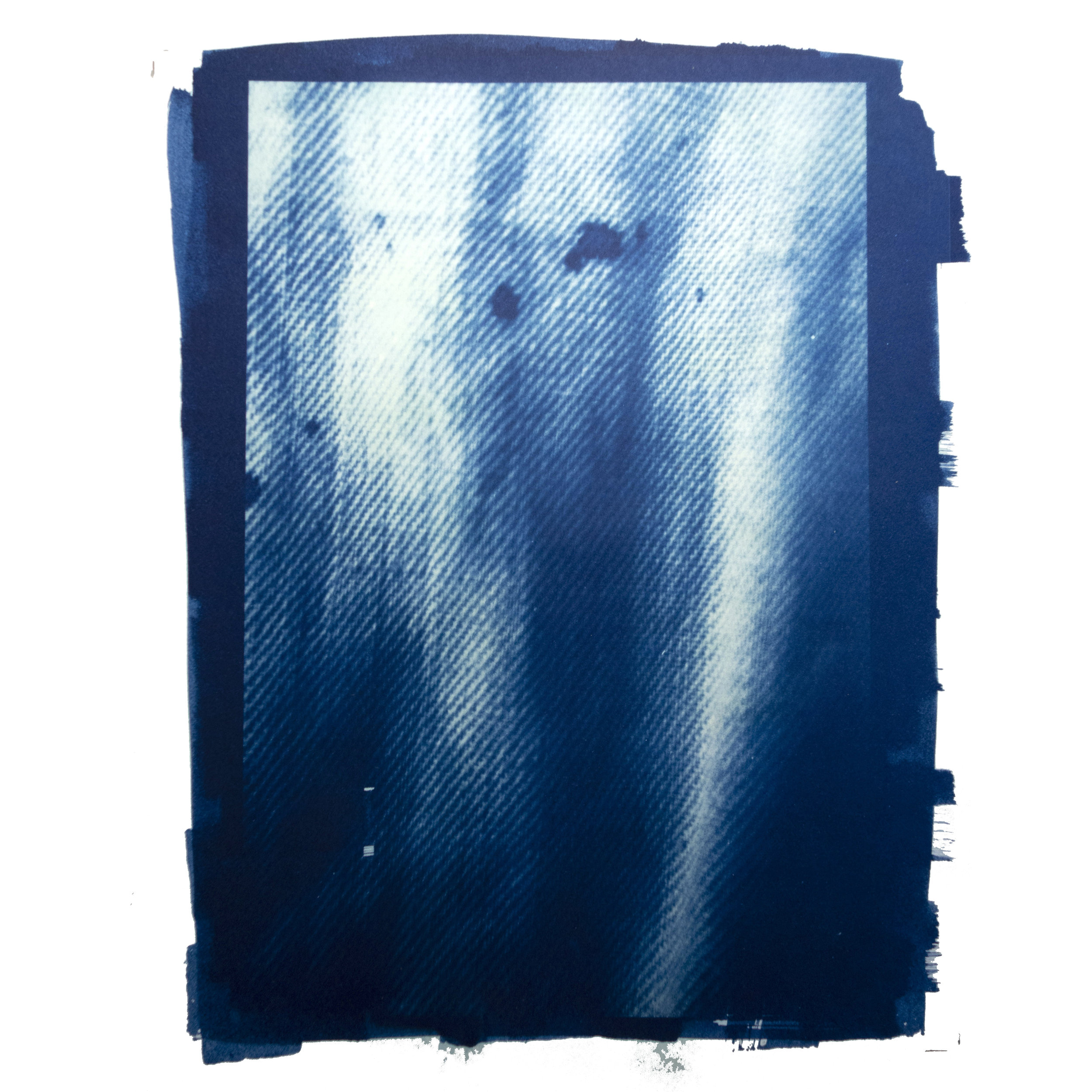 Ellen Sampson Cyanotype WIP 02.jpg