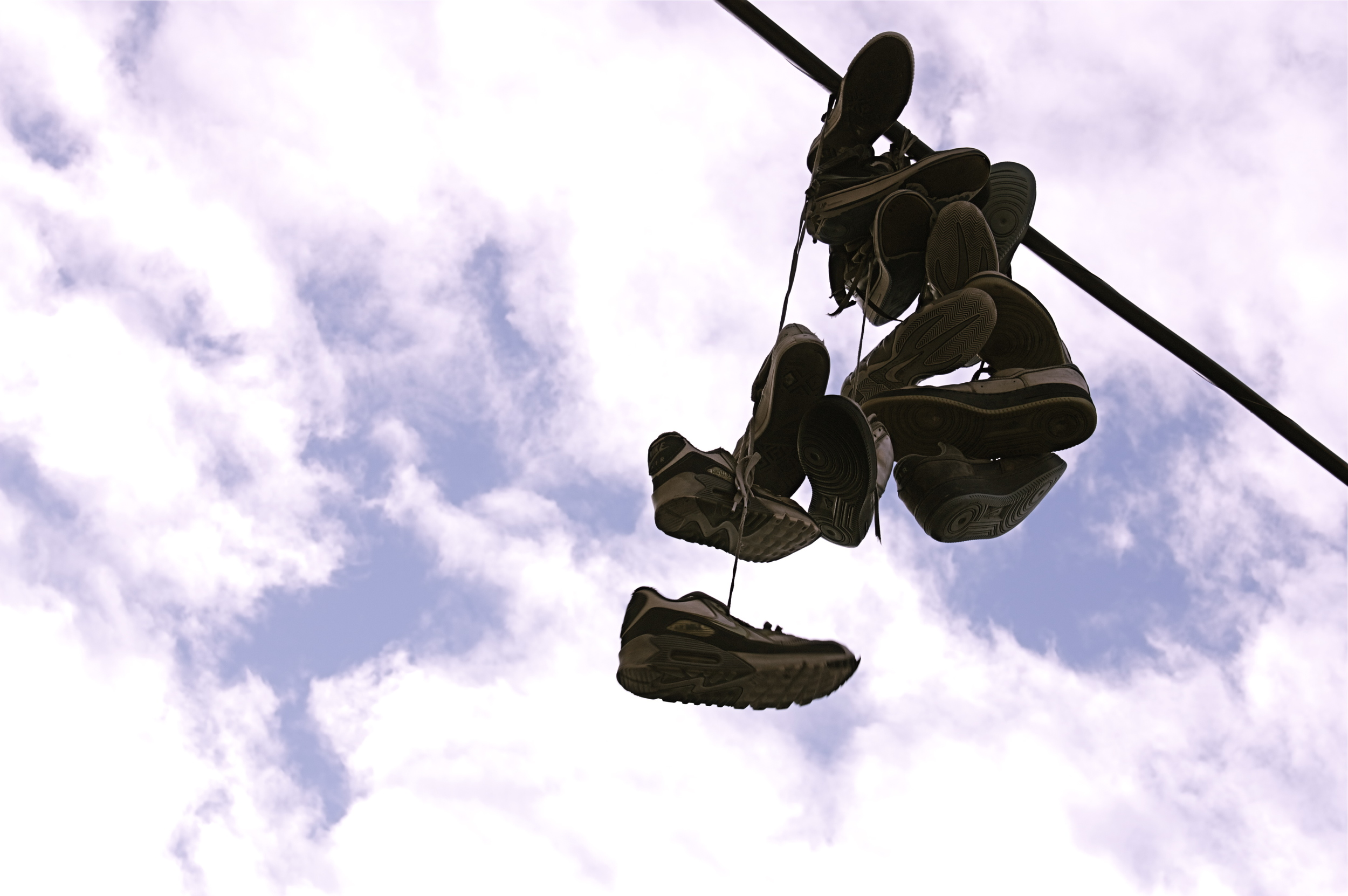 "Sneaker Vine,  Jamel Mims    Digital Photography, 12""x20"""
