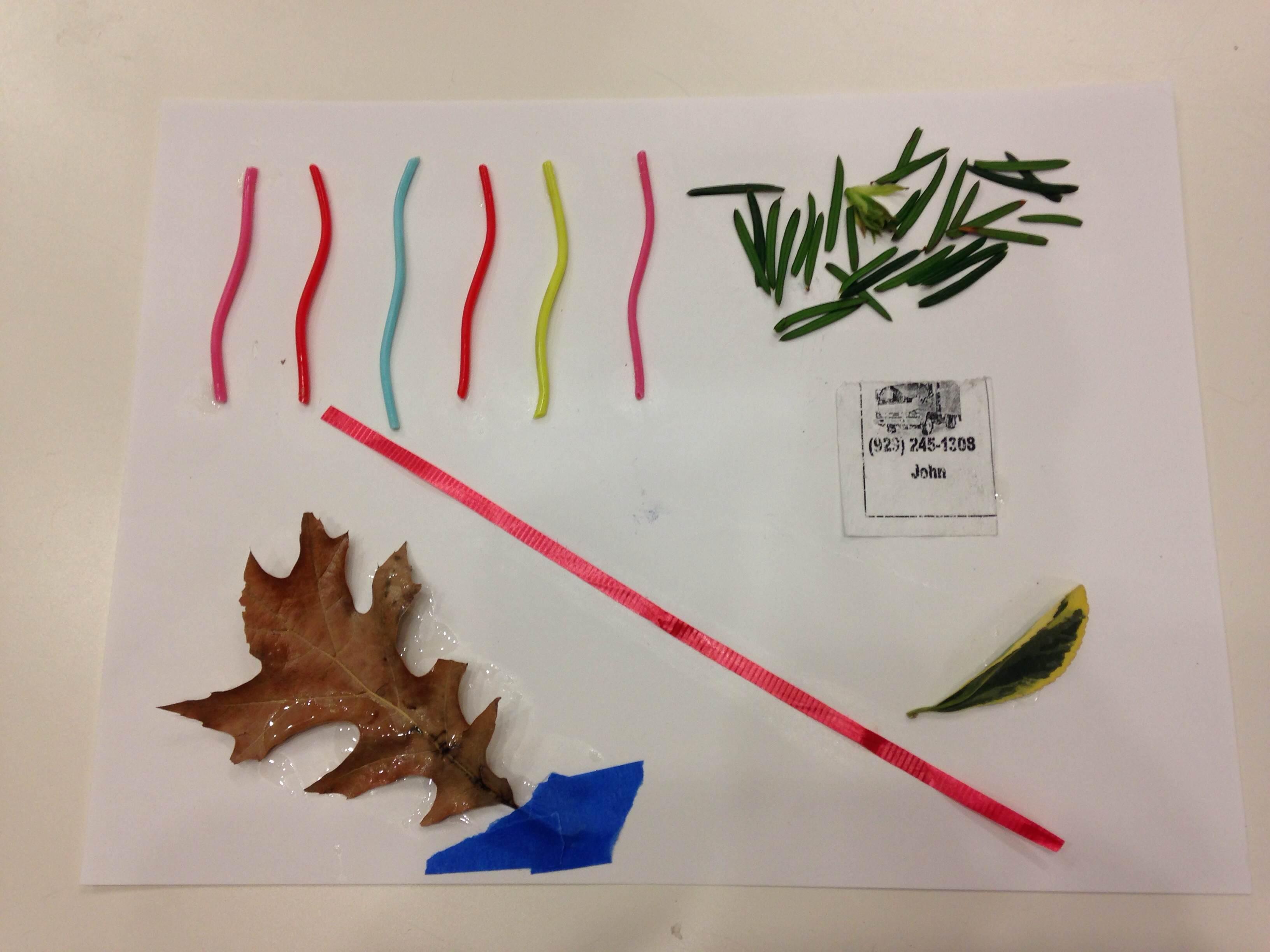 Teaching Artist Exemplar