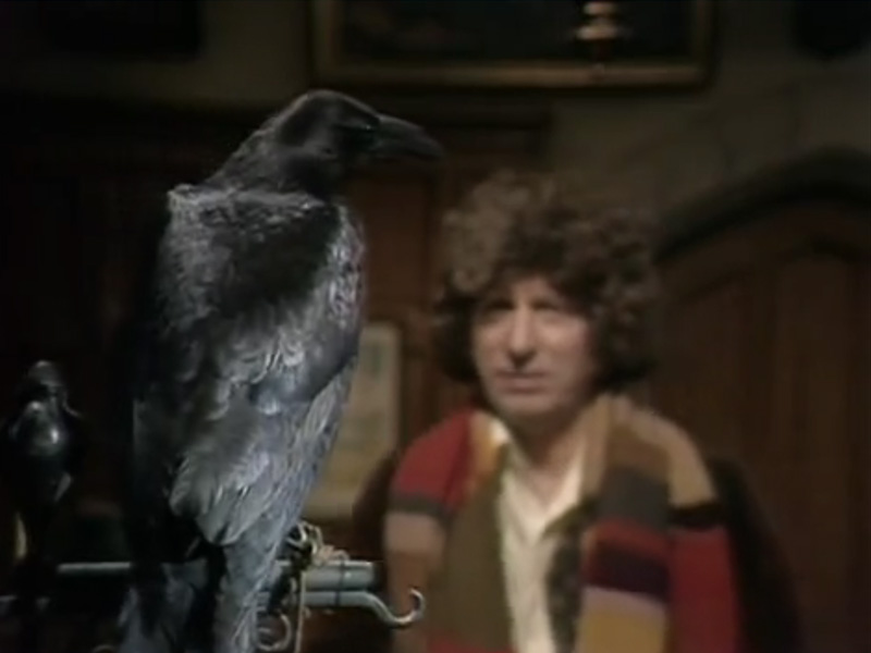 The-Doctor-and-crow.jpg