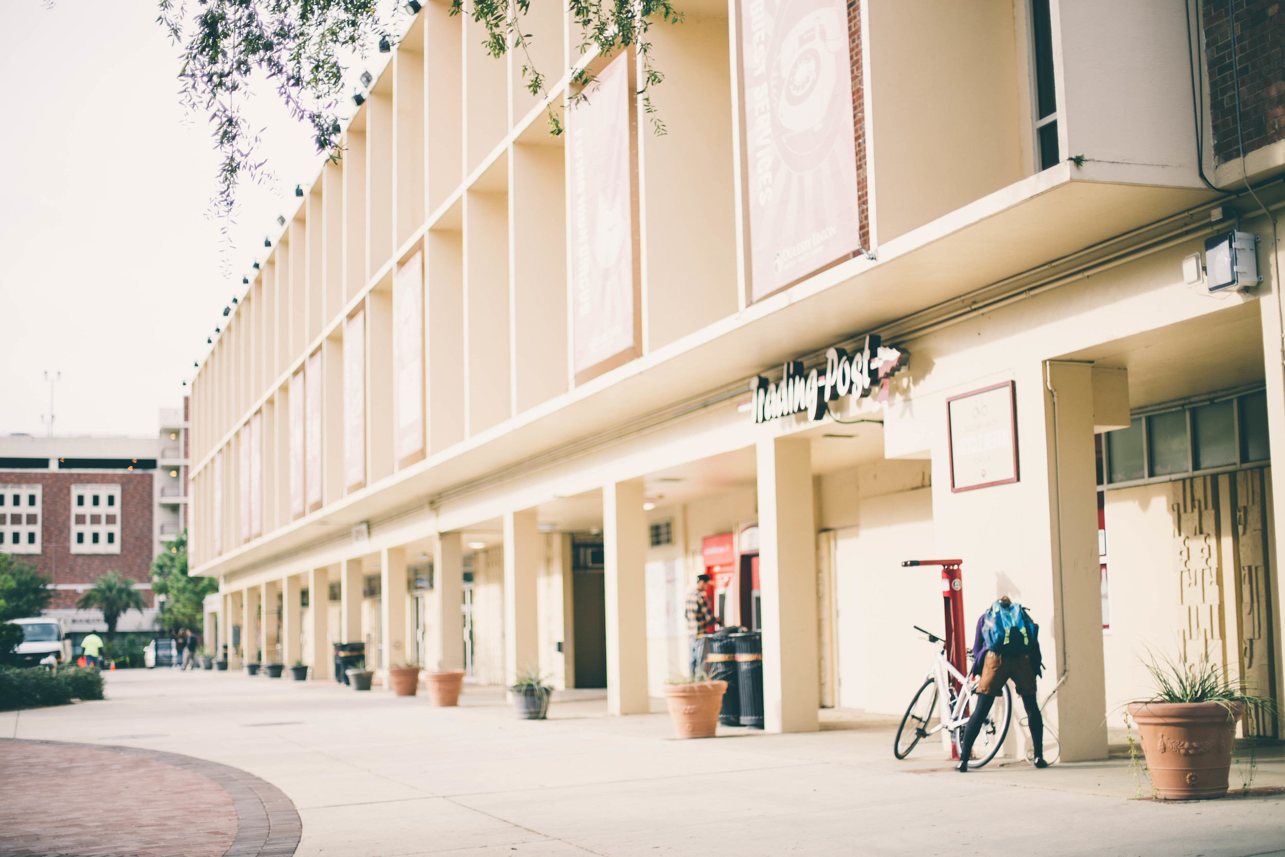 Empty Campus-4.jpg