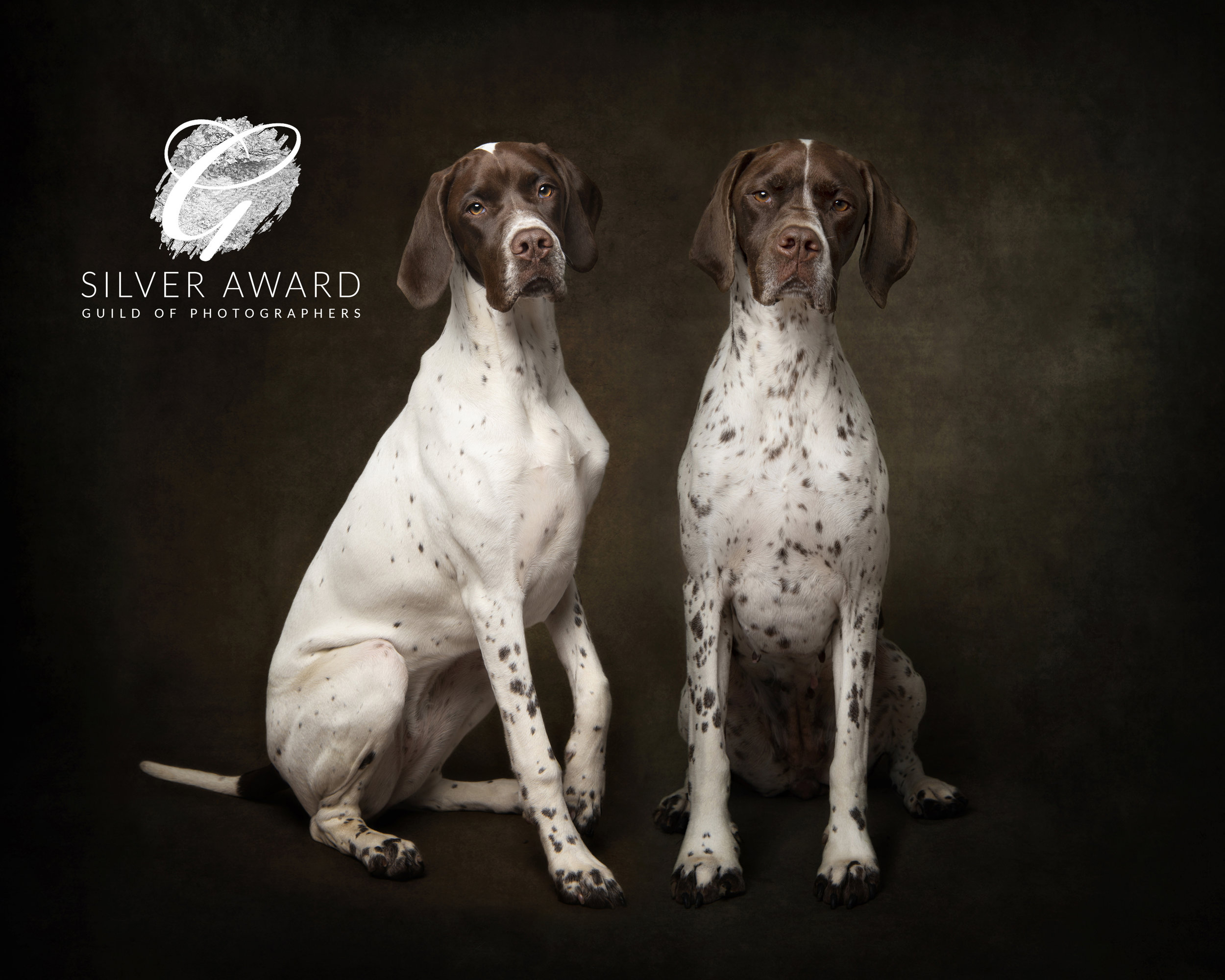 Bronte & Bertha DOG_1000 together For Print guild silver.jpg