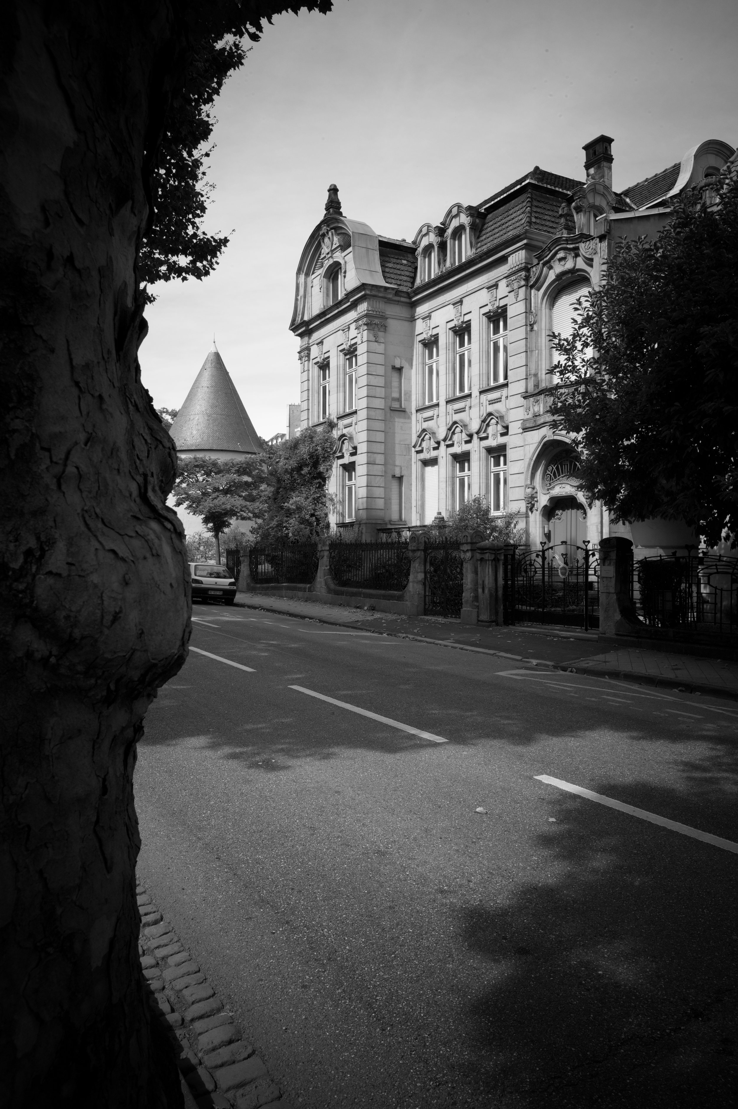 L1002152_Snapseed.jpg