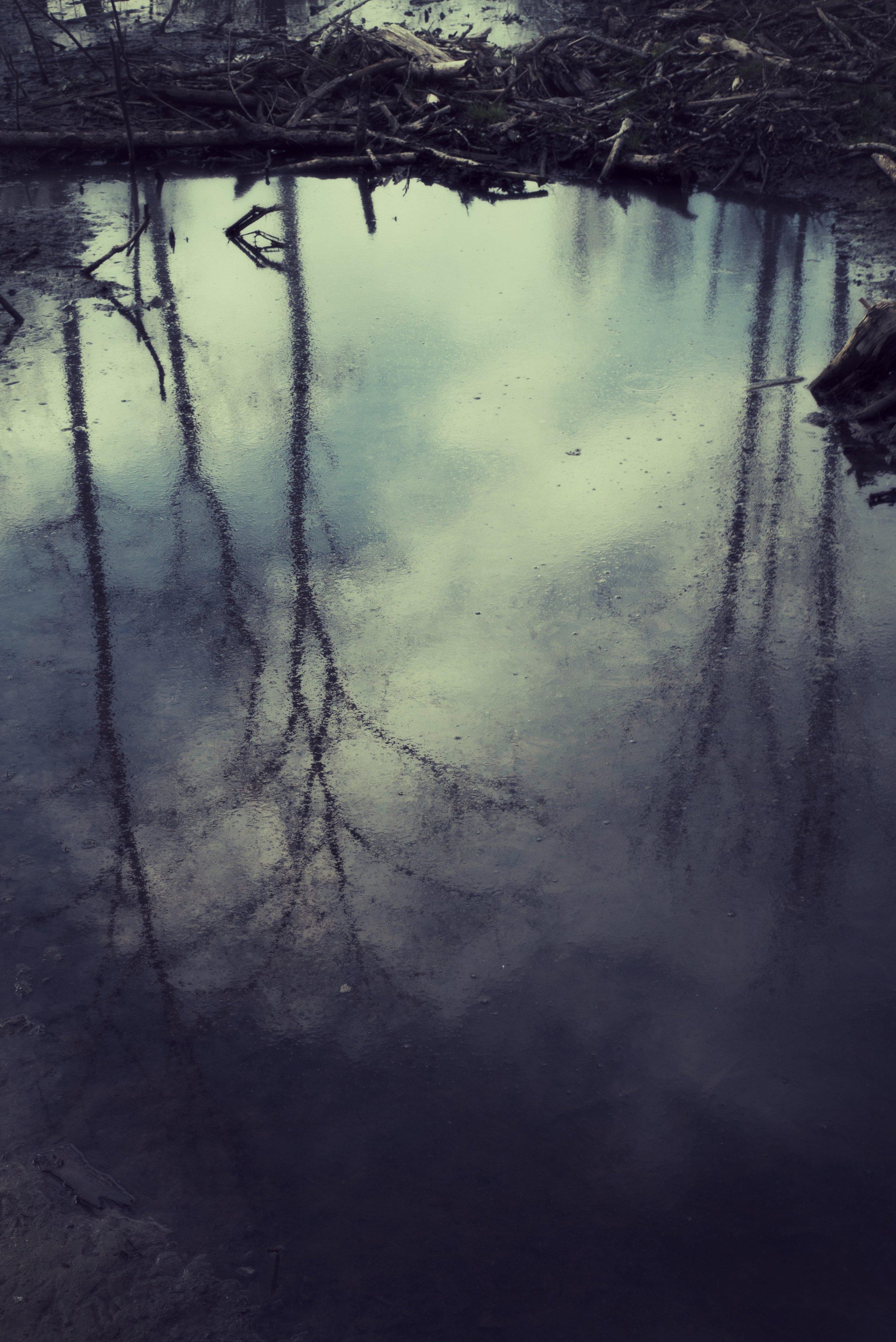 DSC04938_Snapseed.jpg