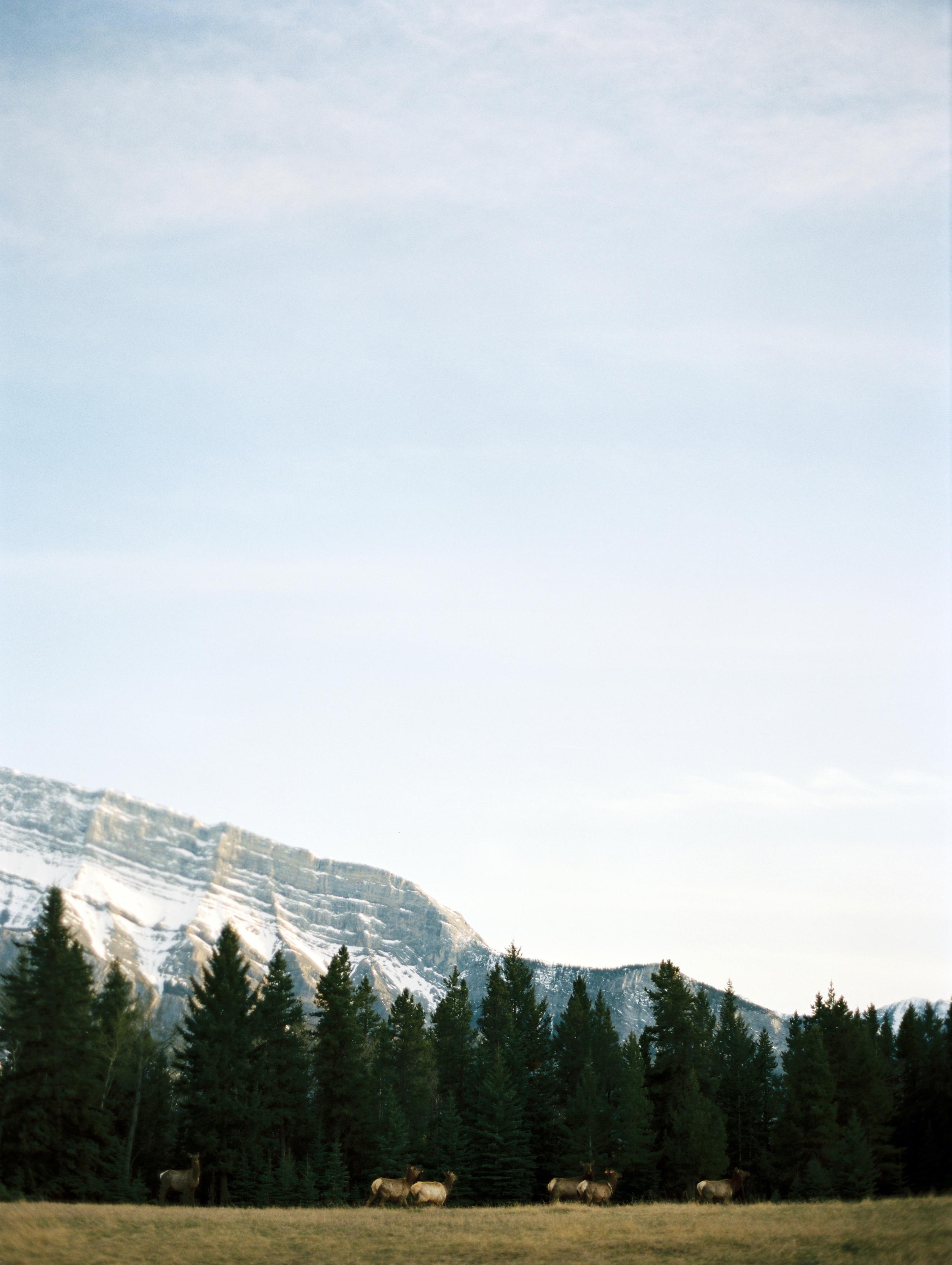 JennaHillPhotography-1.JPG
