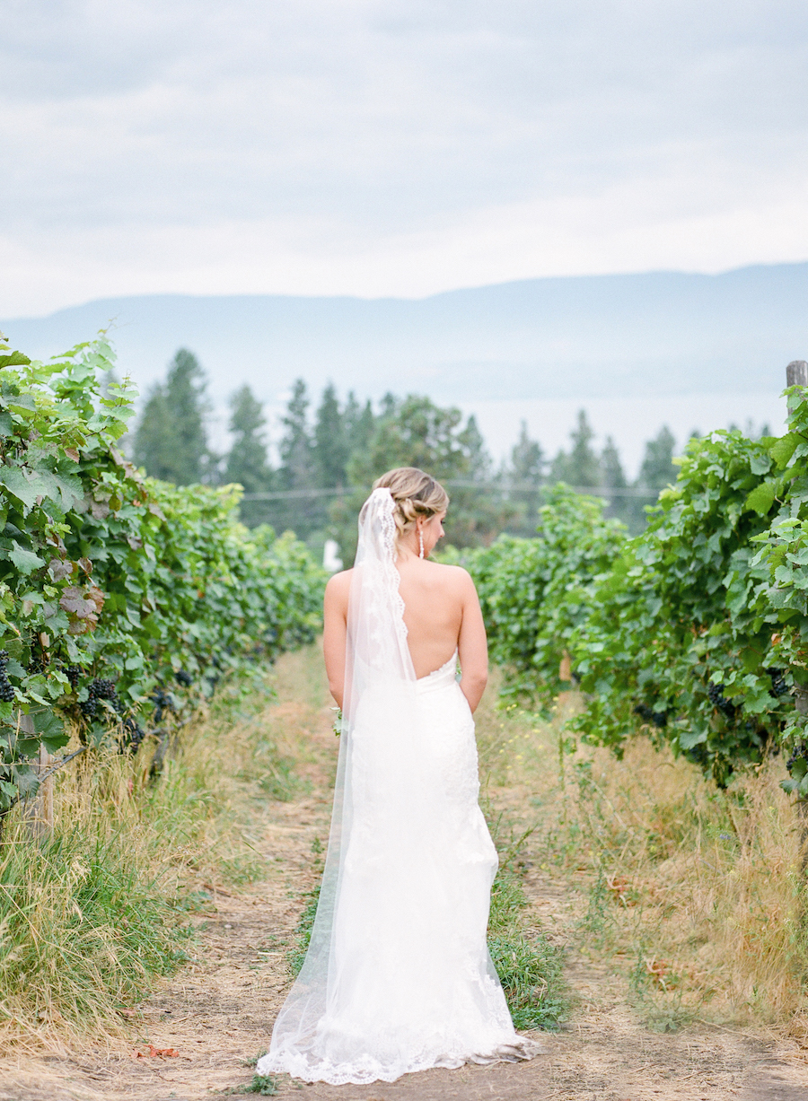 winery wedding bride.jpg