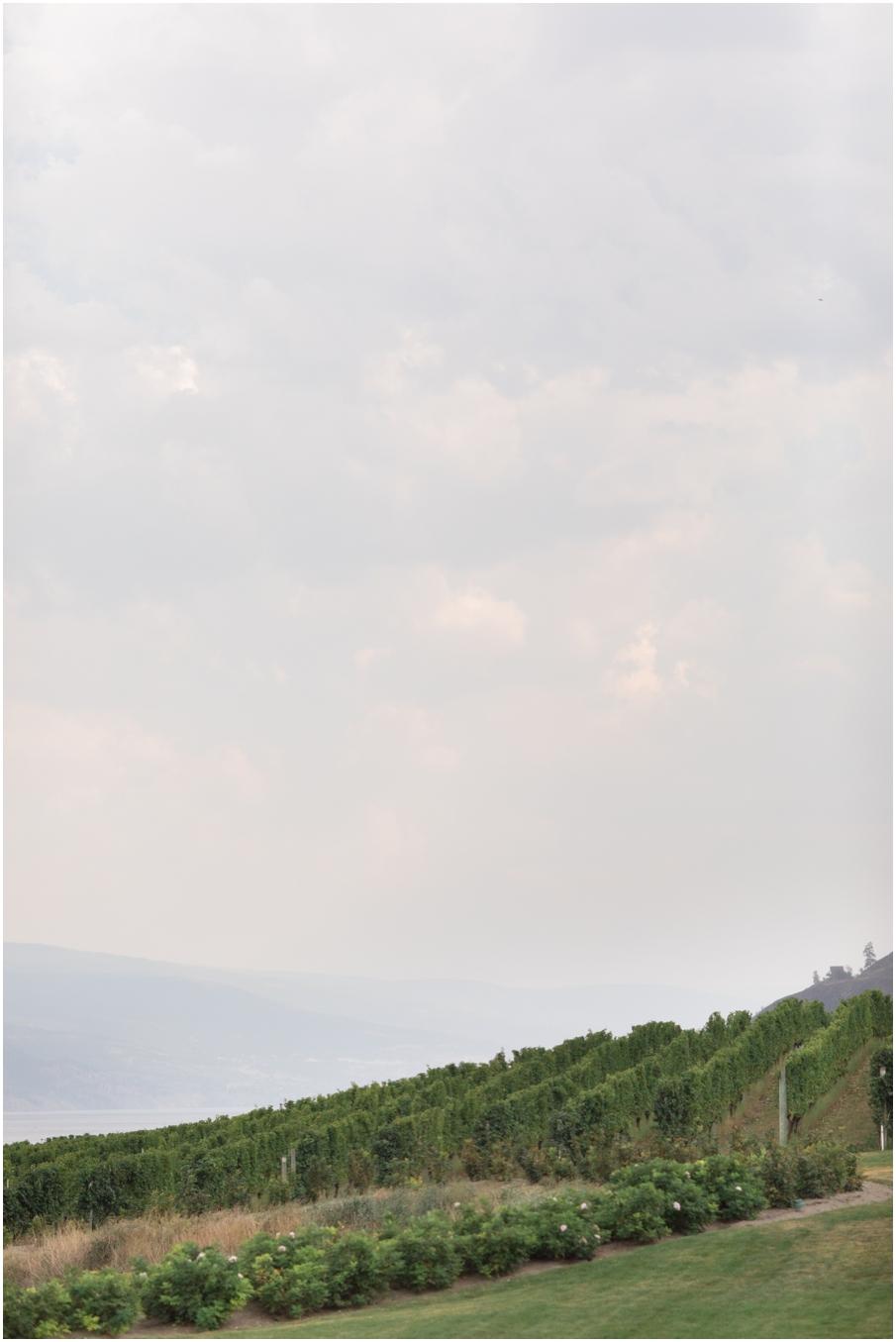 fitzpatrick family winery wedding_1490.jpg