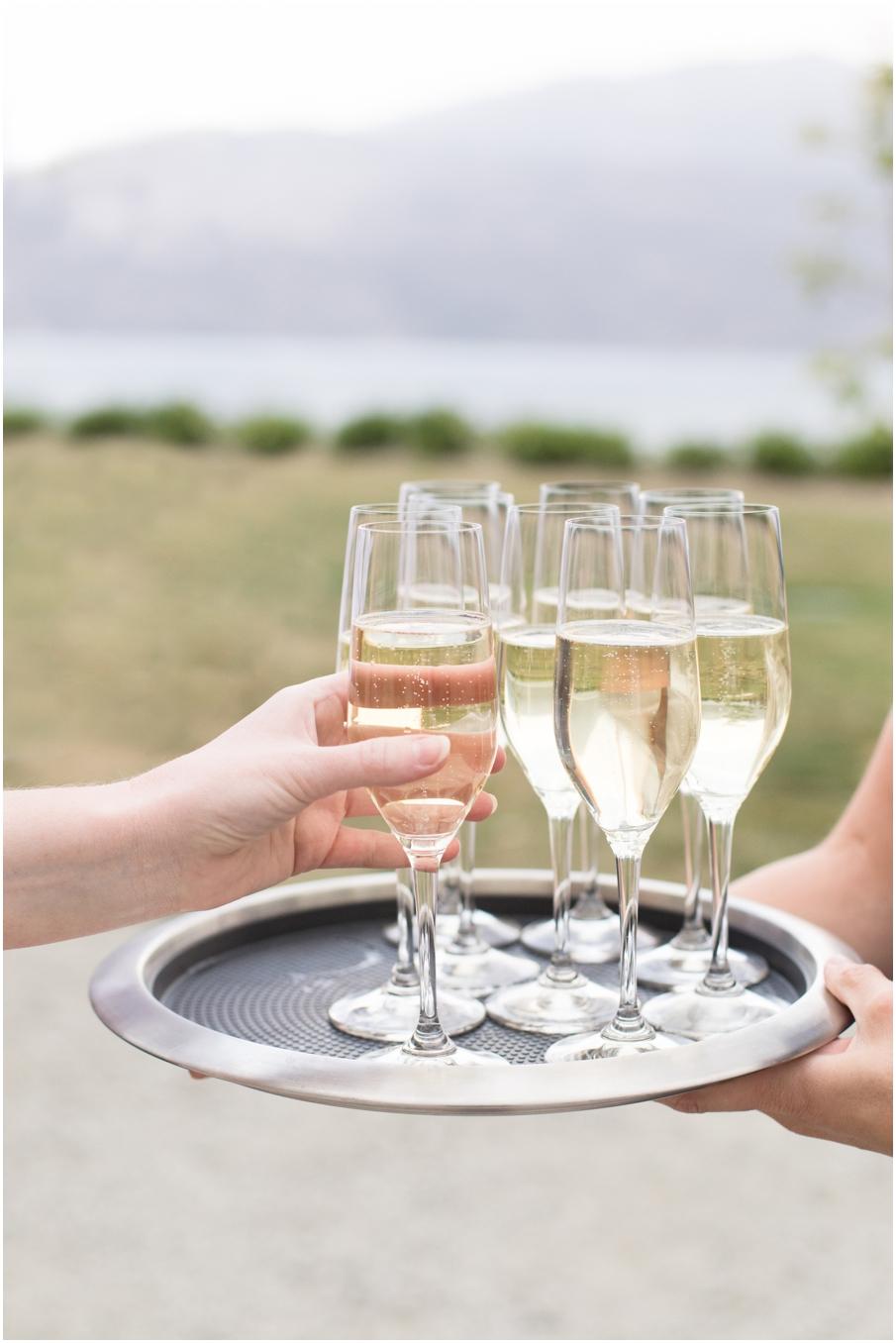 wine ceremony fitzpatrick_1497.jpg