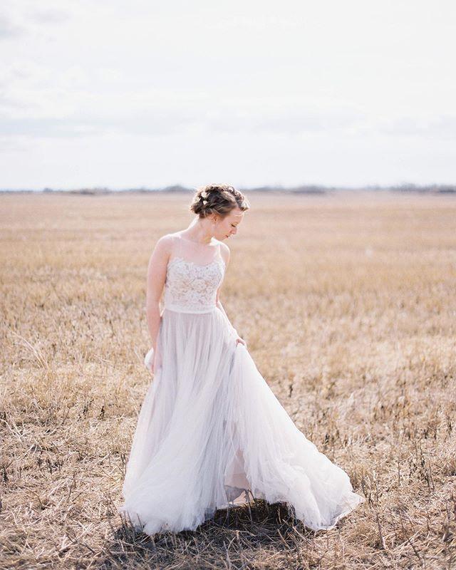 That wedding day feeling. • • • •  #darlingweekend #pursuepretty #vancouver #okanagan #okanaganlifestyle #vancouverphotographer #kelownaweddingphotographer #kelownalocal #yvr #vancouver #kelownanow #fuji400h #vancouverweddingphotographer  #bride #sunflare #sunset #contax645 #mediumformat #filmfeed #film #kelownaphotographer #okanaganwinery #thatsdarling #summerhillwinery #kelowna #vancouverbride #vancouverweddings