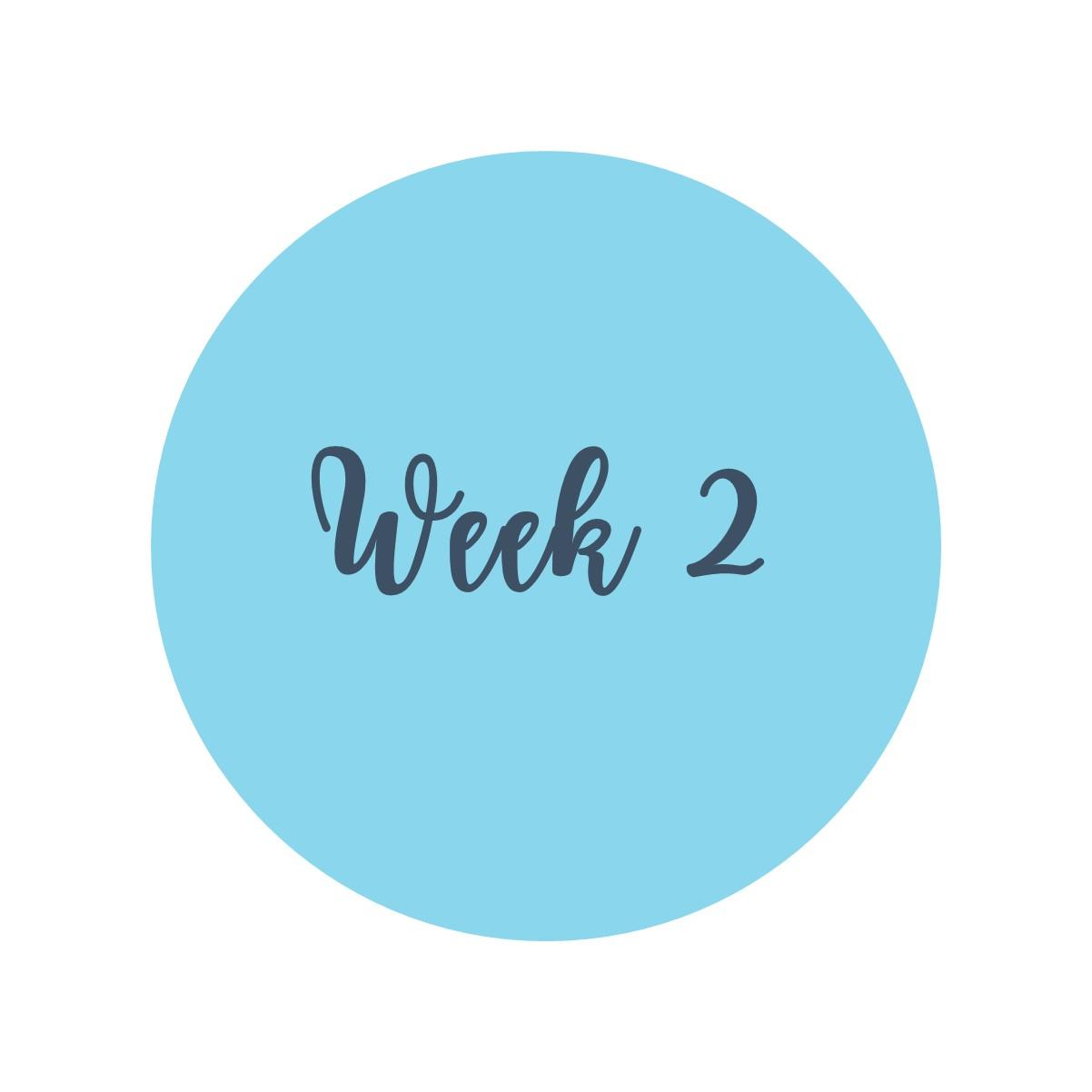 MVP week 2 icon white square.jpg