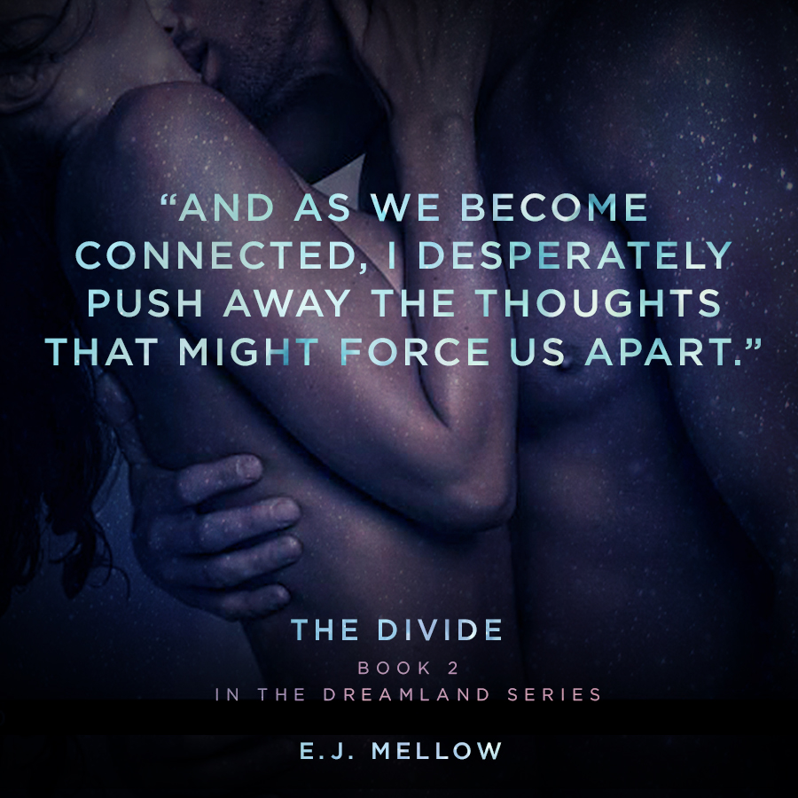 The Divide_quote_4_2.jpg