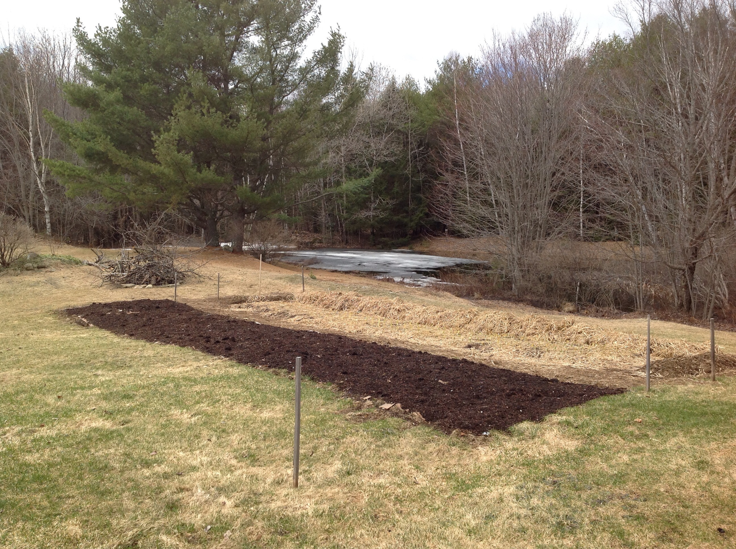The kitchen garden before we could get into the soil and expand.