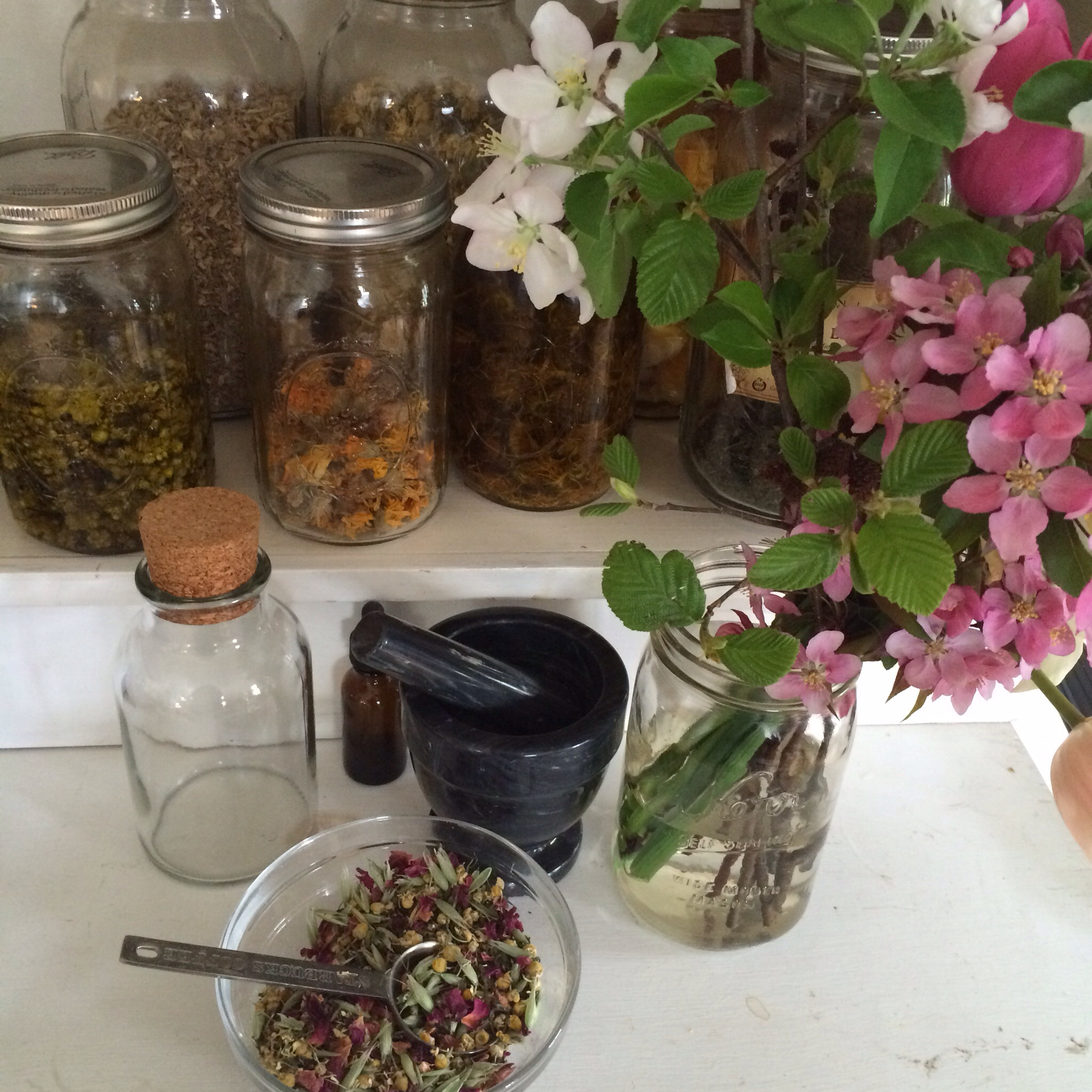 Inspiration corner and a new tea blendready for sale when Ridge Pond Herbals launches.