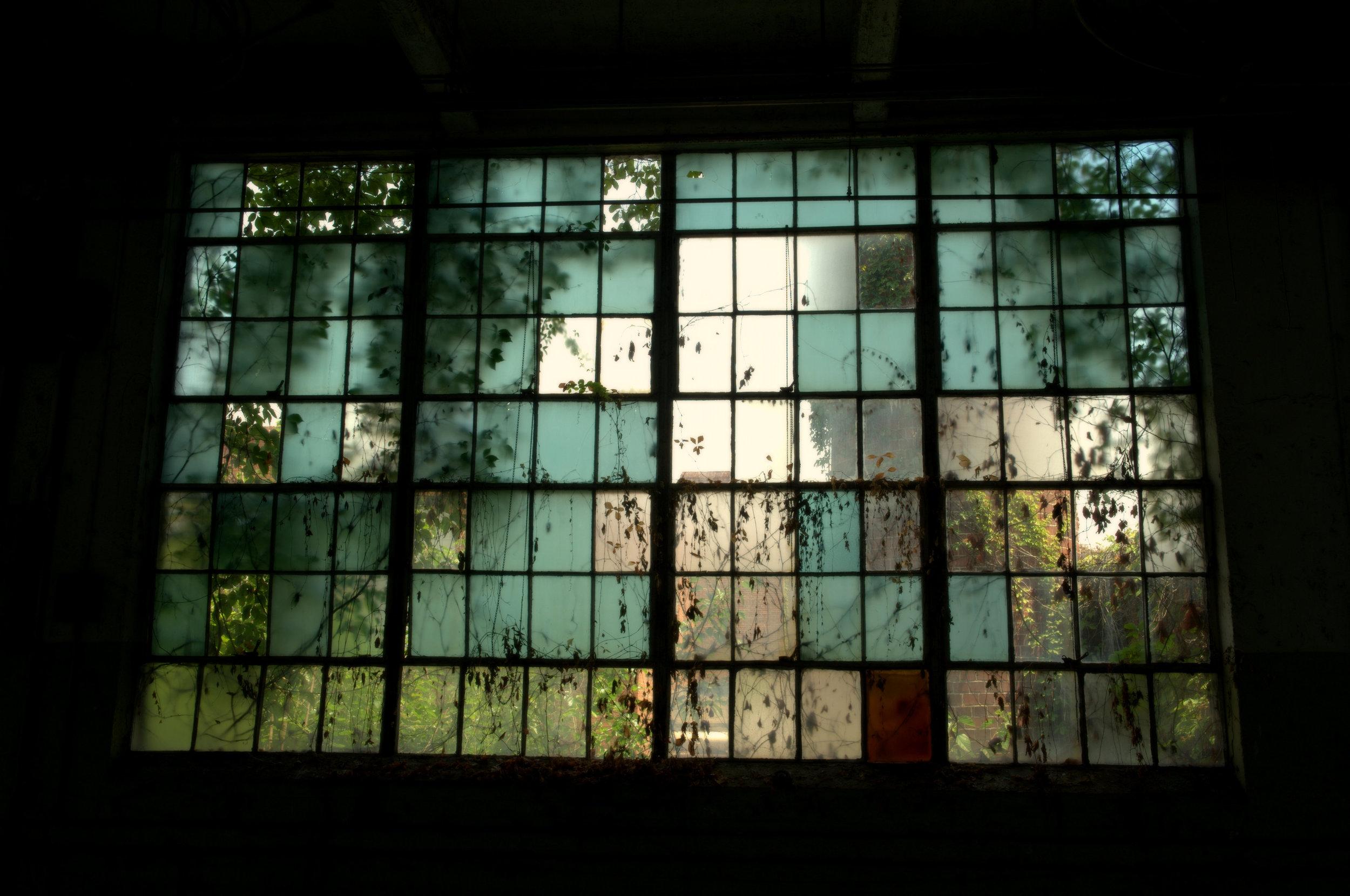 The Window Wall.jpg